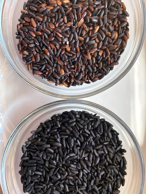 black-rice-two-kinds-in-two-glass-dishes