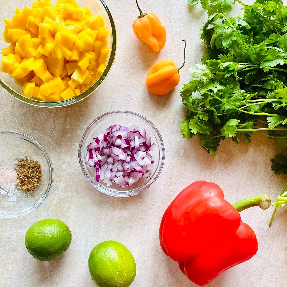 picture of ingredients to make habanero mango salsa